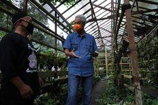 Peduli Spesies Endemik Merapi, Pria Ini Buka Kelas Adopsi Anggrek di Hutan