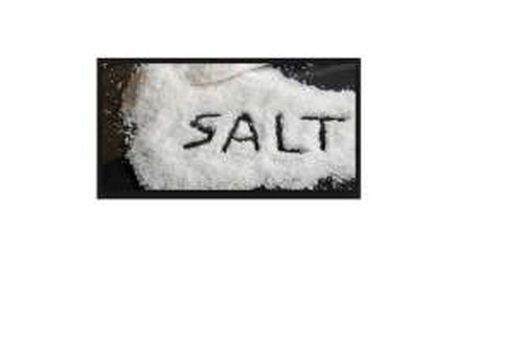 ilustrasi garam.