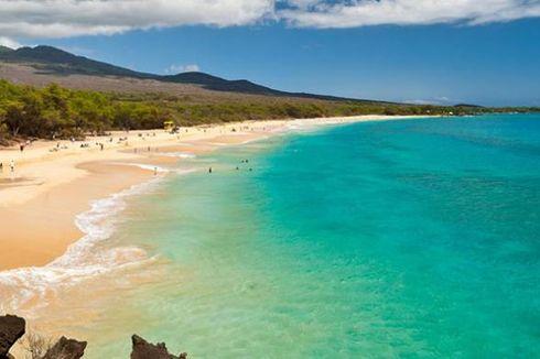 Beasiswa Kuliah Penuh Sambil Menikmati Liburan di Hawaii, Mau?