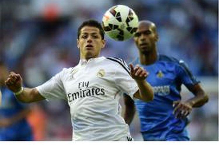 Penyerang Real Madrid Javier Hernandez mengontrol bola sambil dibayang-bayangi oleh pemain Getafe pada laga terakhir Primera Division musim 2014-15 di Santiago Bernabeu, Sabtu (23/5/2015).