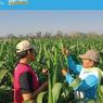 Cerita Alumnus UNS: Manfaatkan Peluang, Bangun Bisnis Desa Organik
