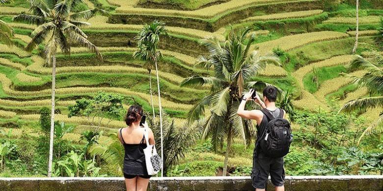 Wisatawan menikmati pemandangan areal persawahan berundak di Tegallalang, Gianyar, Bali, Jumat (5/12/2014). Jumlah kunjungan wisatawan mancanegara ke Bali pada 2014 ditargetkan 3,5 juta orang. Hingga Agustus 2014, jumlah wisatawan mancanegara ke Bali 2,5 juta orang.