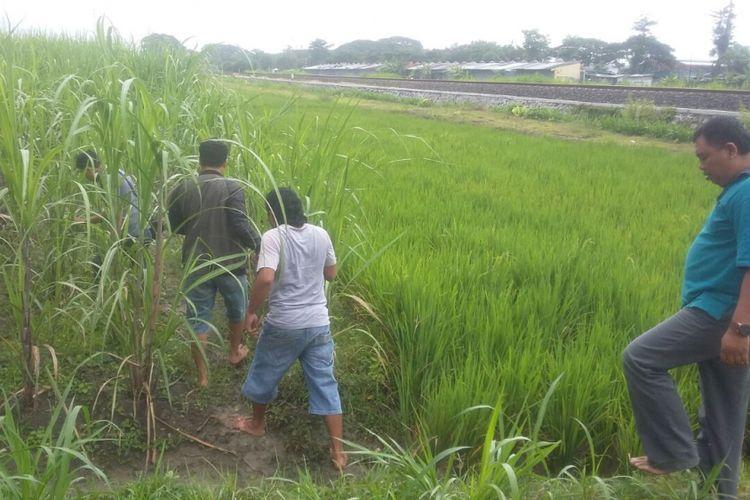 Satuan Reserse Narkoba Kepolisian Resor Blora, Jawa Tengah menemukan 12 paket sabu di kawasan persawahanDesa Kediren, Kecamatan Randublatung, Blora.