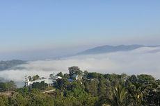 Kampung di Atas Awan, Kampung Lembah Wajur di Flores