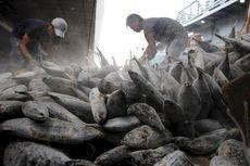 KKP Akan Kembangkan Pelabuhan Perikanan Ramah Lingkungan