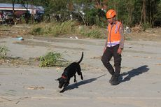 Pasca-banjir Bandang Jayapura, Warga Diminta Lapor Jika Cium Aroma Tak Sedap