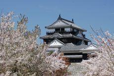 Jangan Ketinggalan, Ini Jadwal Bunga Sakura Mekar di Jepang Tahun 2020