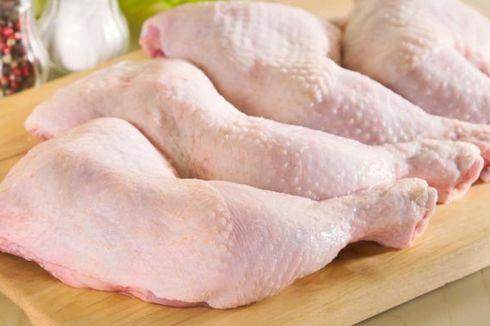 Bakteri Kebal Antibiotik Ditemukan Pada Daging Ayam, Apa Dampaknya ke Konsumen?
