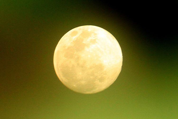 Fenomena 'Supermoon' terlihat di Desa Alue Raya, Kecamatan Samatiga, Aceh Barat, Aceh, Rabu (6/5/2020). Fenomena supermoon terakhir pada 2020 bernama 'flower moon' ini bisa terlihat jelas di seluruh Dunia dimana posisi bulan terdekat dengan bumi dan dapat disaksikan mulai Rabu (6/5/2020) hingga tiga hari ke depan.