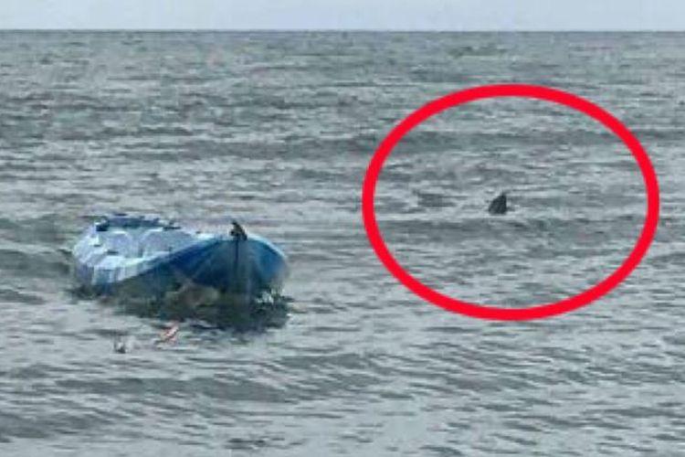 Lingkaran merah adalah sirip hiu yang melemparkan Sarah Williams dari kayaknya. Sarah Williams mengalami kejadian yang disebutnya mirip dengan film Jaws (24/10/2017)