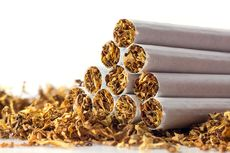 Optimalisasi Cukai Rokok Masuk Program Aksi Pencegahan Korupsi