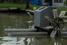 Kembangkan Budidaya Udang, KKP Ciptakan Inovasi Kincir Air Tambak Hemat Energi