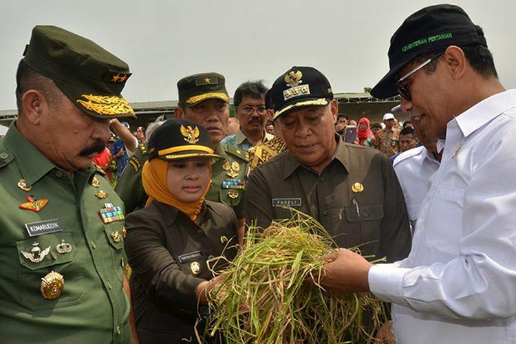 Menteri Pertanian Amran Sulaiman (kanan) bersama Aster KASAD Mayjend TNI Komaruddin Simanjuntak (kiri), dalam acara Panen Raya Padi dan Serap Gabah Petani di Desa Tritunggal, Kecamatan Babat, Lamongan.