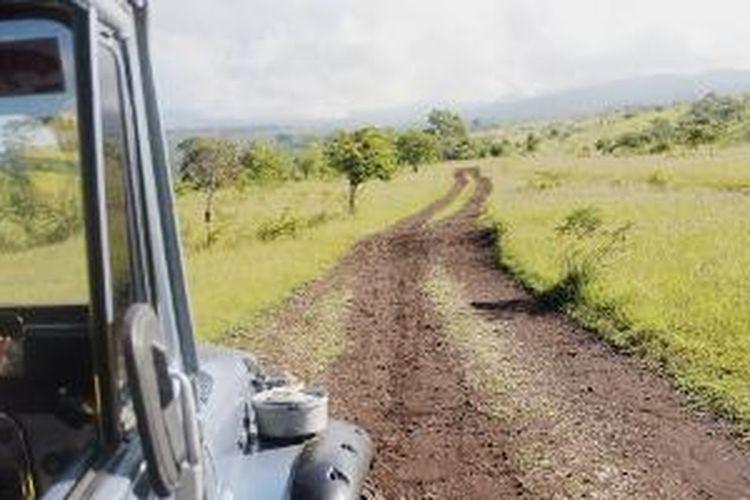 Sebuah jip Toyota hardtop menjelajahi medan lereng Gunung Tambora di sisi Kabupaten Dompu, Nusa Tenggara Barat (NTB), Sabtu (4/4/2015). Kendaraan seperti inilah yang diandalkan untuk menembus tantangan beratnya medan bergunung-gunung di wilayah Pulau Sumbawa, NTB.