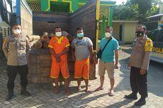 Polisi Gerebek Aktivitas Penebangan Liar di Lamongan, 2 Pelaku Ditangkap