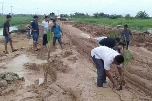 Kesal Jalan Rusak Berlumpur Tak Juga Diperbaiki, Warga Tanam Pisang dan Sawit