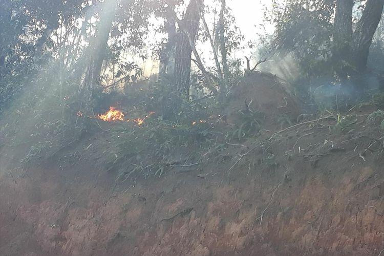 Hutan Pinus seluas 3 Hektare di perbatasan Dusun Tonglo, Lembang Tapparan Utara, Kecamatan Rantetayo dengan Lembang Batu Tiakka, Kecamatan Saluputti, Tana Toraja terbakar, petugas Danramil, BPBD dan Pemadam Kebakaran melakukan upaya pemadaman api, Rabu (24/07/2019)