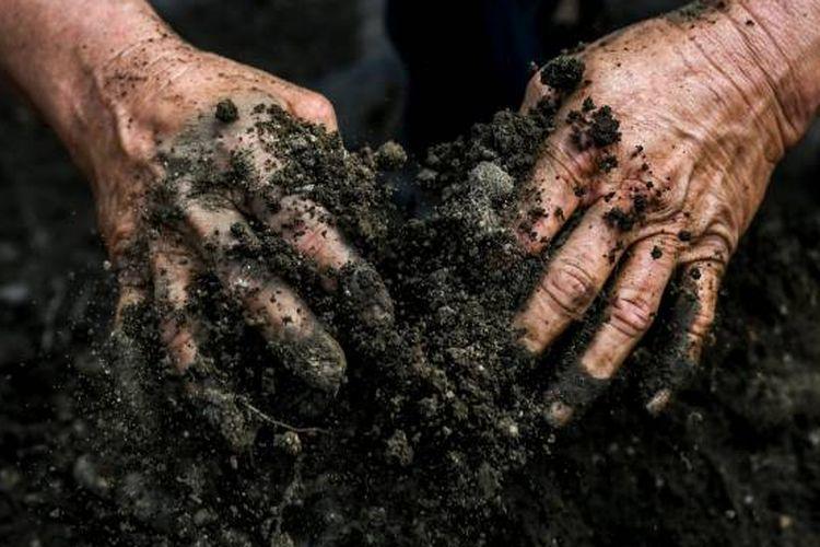 Kemampuan tanah untuk menyerap air dapat berkurang akibat perubahan iklim.