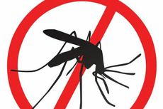 WHO Targetkan Eradikasi Kasus Malaria Tahun 2030