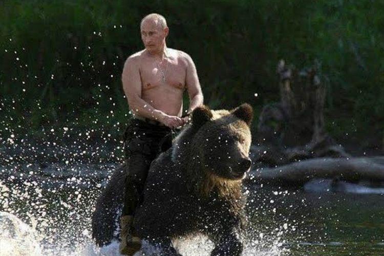 Putin menunggang beruang.