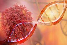 Ilmuwan AS: Pengeditan Gen CRISPR Efektif untuk Imunoterapi Kanker