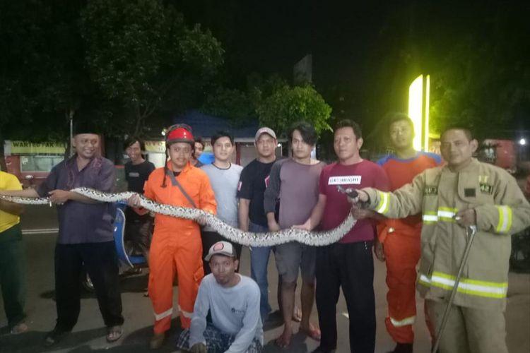 Petugas pemadam kebakaran dan warga mengevakuasi ular sanca sepanjang 5 meter di Cipinang, Jakarta Timur, Jumat (21/6/2019) tengah malam.