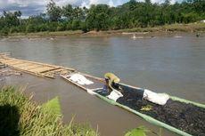3.000 Pemungut Limbah Batubara Sungai Bengkulu 6 Bulan Menganggur