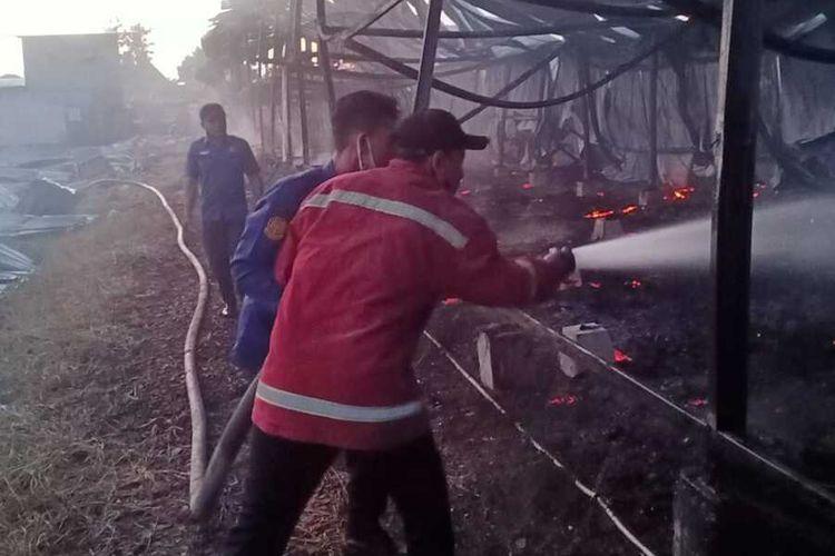 Tempat usaha peternakan unggas di Desa Medani, Kecamatan Tegowanu, Kabupaten Grobogan, Jawa Tengah terbakar hebat, Rabu (22/10/2020).