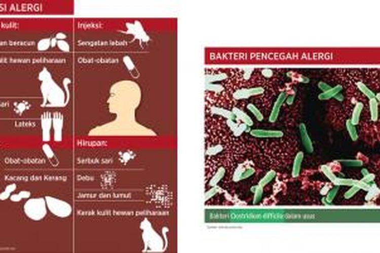 Penyakit Pada Kulit Yang Diakibatkan Oleh Reaksi Alergi Tungau Disebut ...