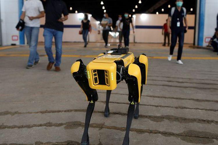 SPOT, Robot anjing yang digunakan untuk memantau kondisi kesehatan pasien Covid-19.