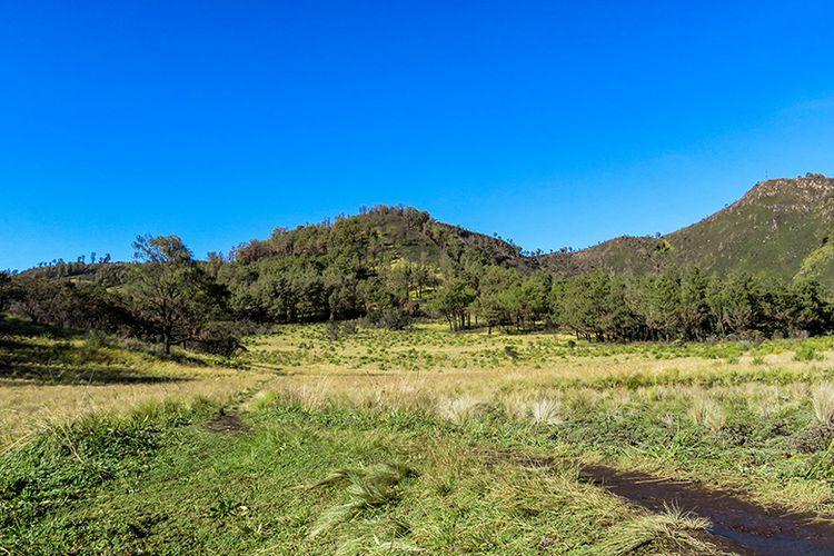 Sabana Gunung Lawu di sekitar Gupakan Menjangan.