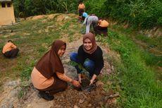 Menteri LHK: Idealnya Seorang Tanam 25 Pohon, Bisa Dimulai Sejak SD