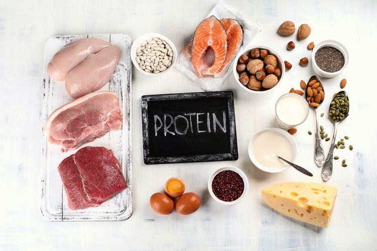 Ilustrasi makanan tinggi protein