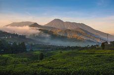 Pendakian Gunung Gede Pangrango Buka Lagi 5 Maret 2021