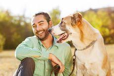 Ilmuwan Temukan Rumus Baru untuk Hitung Usia Anjing Jadi Usia Manusia