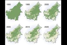 Ramai soal Unggahan Gambar Penyusutan Hutan Kalimantan, Benarkah Separah Itu?