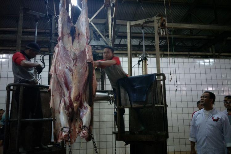 Proses pemotongan hewan kurban di Rumah Potong Hewan (RPH) Dharma Jaya yang terletak di kawasan Cilincing, Jakarta Timur, Rabu (22/8/2018).