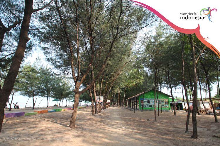 Pantai Mangrove di Tuban