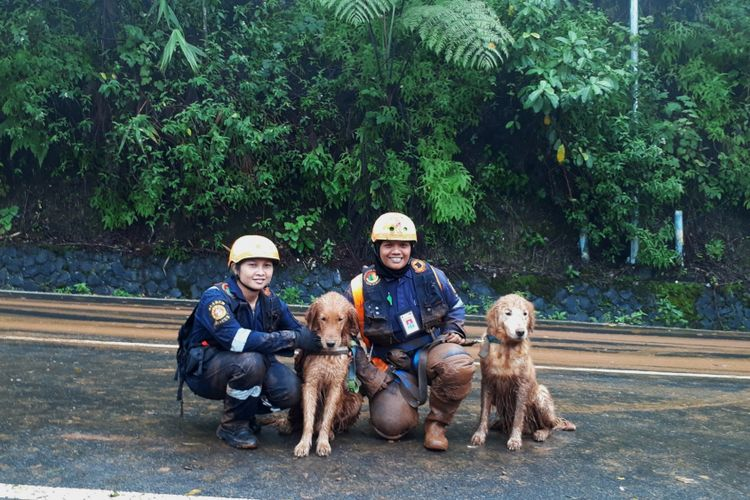 Dua petugas dari Tim Jakarta Rescue menerjunkan dua anjing pelacak bernama Alpha dan Delta untuk melakukan pencarian korban longsor yang belum ditemukan di Riung Gunung, Puncak, Bogor, Jawa Barat, Selasa (6/2/2018).