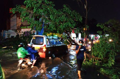 Pohon Tumbang di Simpang Tugu Jam, Jalan Margonda Raya Padat Merayap