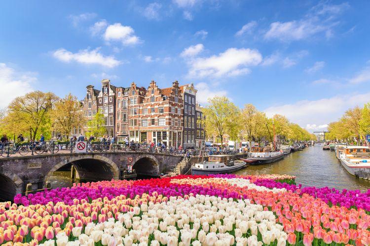 Ilustrasi panorama kanal di Amsterdam saat musim bunga tulip.