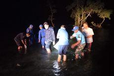 Penyelundupan Benur Marak, KKP Lepasliarkan Lagi Ribuan Benih Lobster