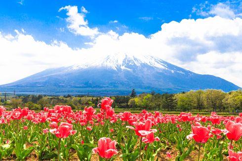 Sebelum Liburan Musim Panas di Jepang, Ikuti 3 Tips Berikut Ini
