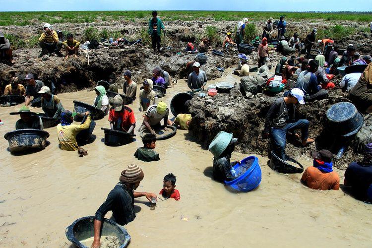 Ratusan warga mencari emas yang diduga peninggalan masa kerajaan Sriwijaya di kanal PT Samora Jaya Usaha di Desa Pelimbangan, Kecamatan Cengal, Kabupaten Ogan Komering Ilir (OKI), Sumatera Selatan.