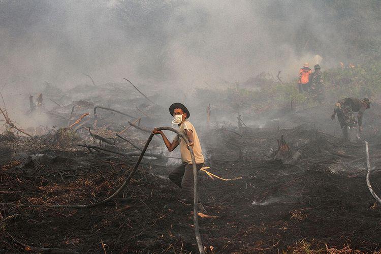 Fakta Kabut Asap Di Sumatera Dan Kalimantan Penerbangan