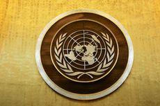 Struktur Organisasi dan Badan Utama PBB