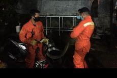 Damkar Evakuasi Ular Sanca Sepanjang 2,5 Meter di Kebon Jeruk