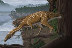 110 Juta Tahun Lalu, Dinosaurus Ompong yang Aneh Hidup di Australia