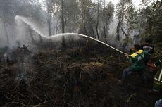 Bank Dunia: Kerugian RI akibat Kebakaran Hutan Capai Rp 72,95 Triliun