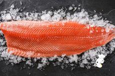 Perhatikan, Cara Menyimpan Salmon yang Baik